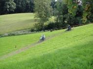 Bueriswilen-2011-004